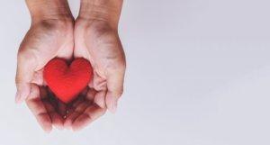 Solidarietà digitale locale: come è nata Torino City Love