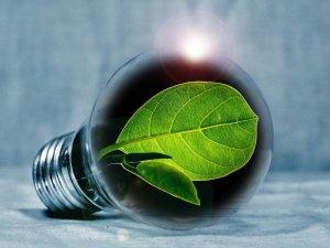 Start-up italiane del settore energia: un viaggio nell'innovazione