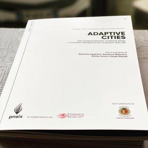 white paper adaptive cities