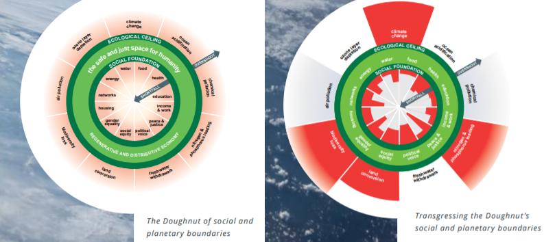 grafici circular city Amsterdam doughnut city città circolare sostenibile