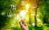 Energy Management in Italia: gestire l'energia tra sfide e opportunità